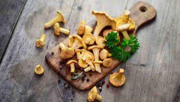 как солить грибы