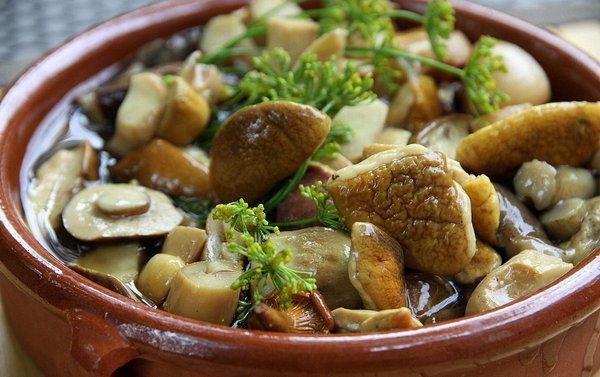 Маринованные белые грибы: вкуснейшие рецепты приготовления