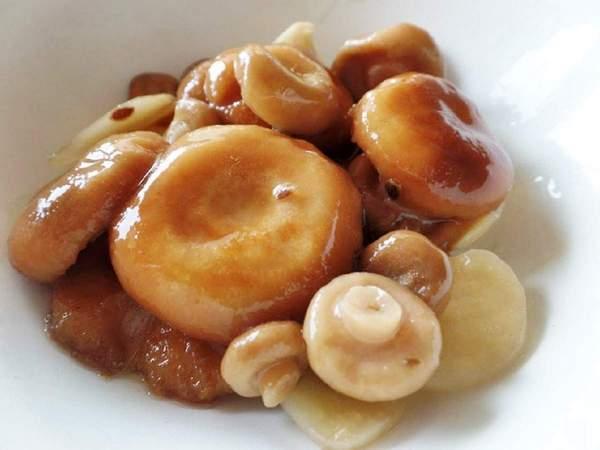 Засолка волнушек: простые и вкусные рецепты