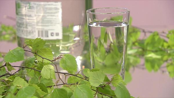 Березовый сок: метод сбора и рецепты приготовления