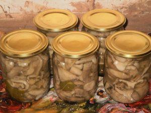 Солёные грузди рецепт с фото пошагово