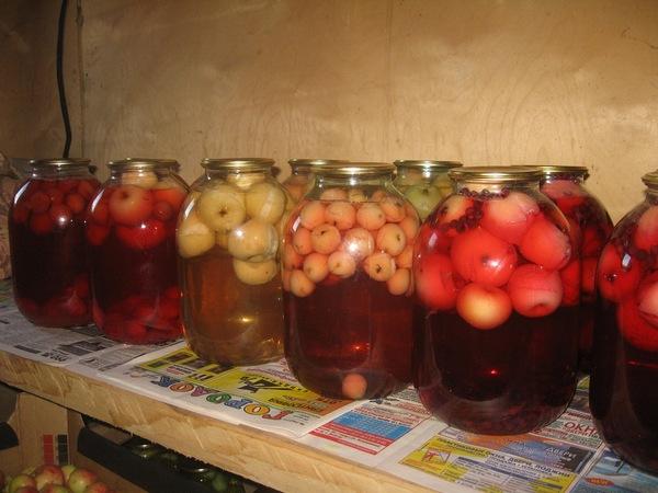 Компот из яблок: 5 рецептов самого вкусного домашнего напитка