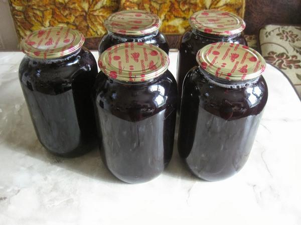 Виноградный сок в домашних условиях рецепт 63