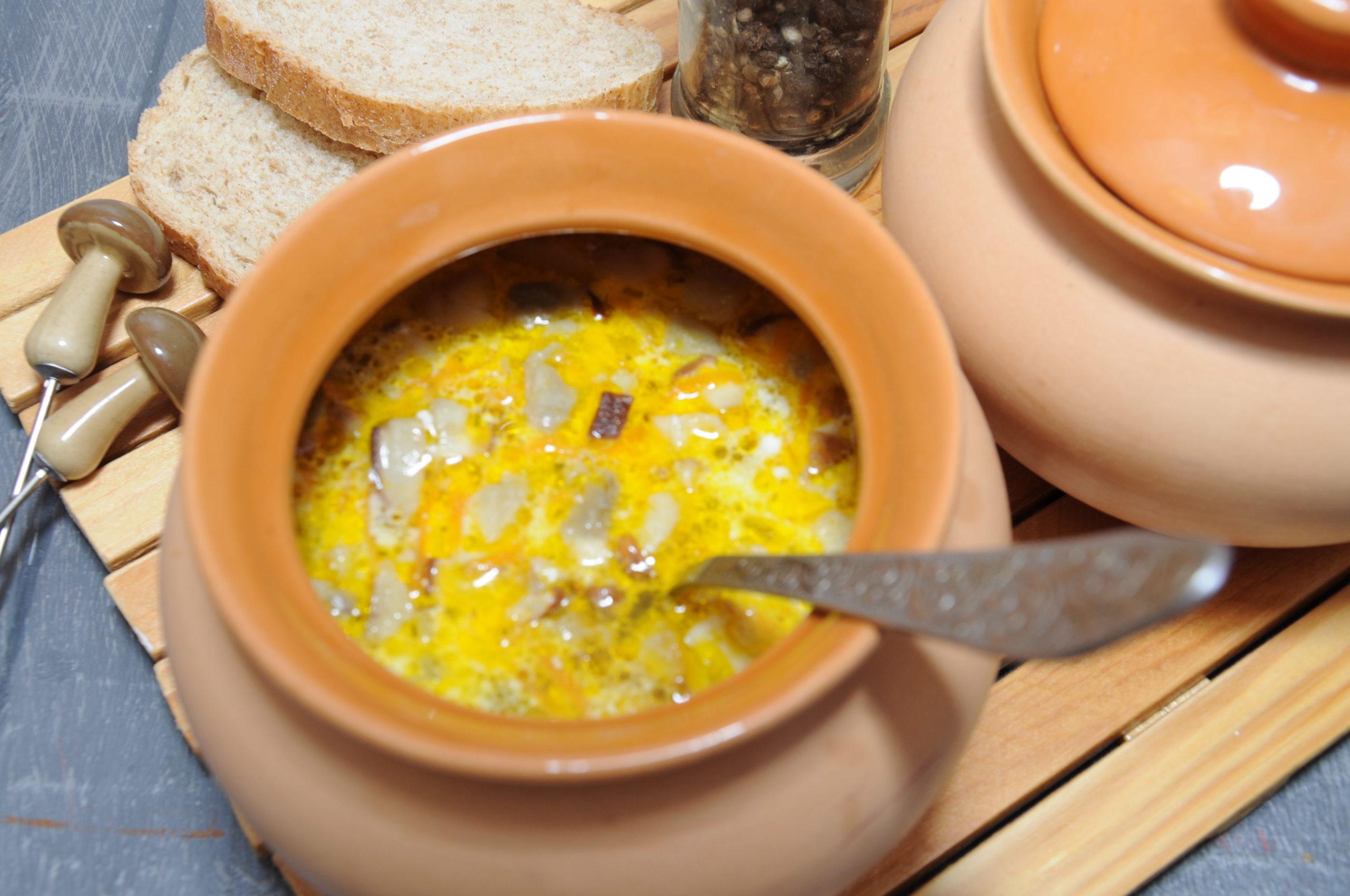 суп из замороженных лесных грибов